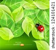 vector background with leaves and ladybug - stock photo