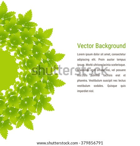 Vector background with mandala or label beautiful ash leaves. Vector frame, card with colourful spring and summer leaves prints. Grunge design element for web and print.