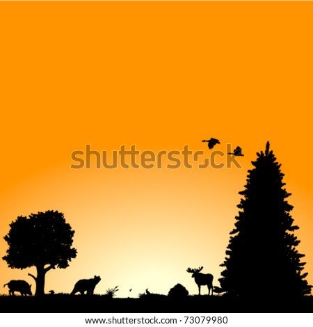 Vector background with North American wildlife : plants, birds and animals