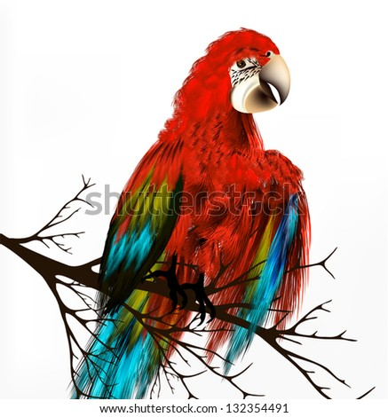 vector background with realistic  parrot Ara bird  sit on branch - stock vector