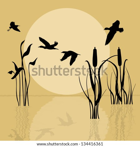 Vector background with silhouette flying birds over lake at sunset - stock vector