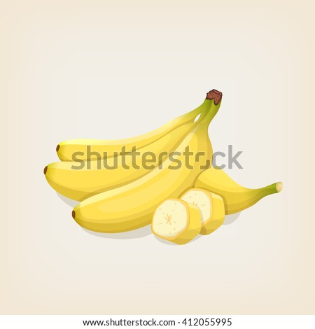Vector bananas. Bunches of fresh banana and sliced banana. Vector illustration.