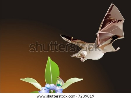 vector. bat on hunting - stock vector