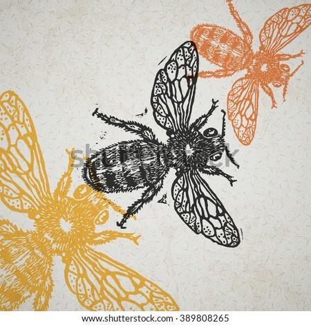 Vector bee in abstract composition. Linocut honeybee in flight in different colors on old paper - stock vector
