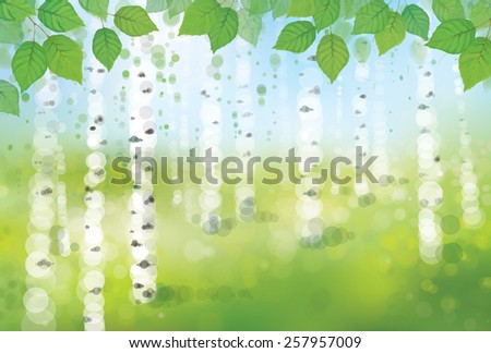Vector birch forest bokeh background. - stock vector