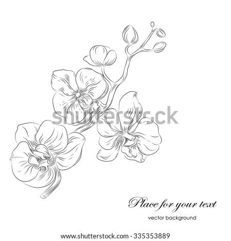 Vector black and white  hand drawn pattern with stylized orchid branch and place for text. Perfect  cards for any  kind of design, birthday and other holiday - stock vector