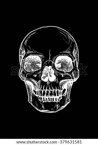 Vector black and white illustration of  human skull with a lower jaw in ink hand drawn style. isolated on black.  - stock vector