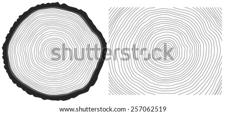 Vector black and white saw cut pine tree trunk and tree rings background - stock vector
