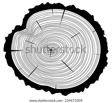 vector black and white wooden cut of a tree log with concentric rings and bark  - stock vector