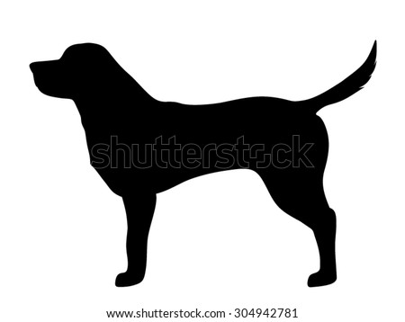 vector black silhouette of a labrador retriever dog isolated on a white background