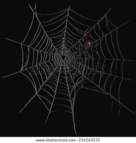white spider web isolated on black stock vector 60416617