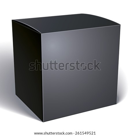 Vector blank black box isolated on white background, template for your package design, put your image over the pack, illustration eps 8.