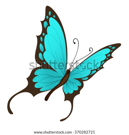 Vector blue butterfly on white background - stock vector