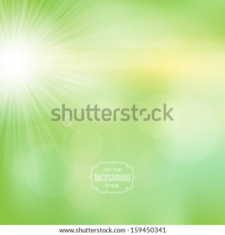 Vector blurry soft summer background with photographic bokeh effect and bright sun. Smooth unfocused film effect. Radiant rays, green natural environment, a bright warm day outdoors. - stock vector