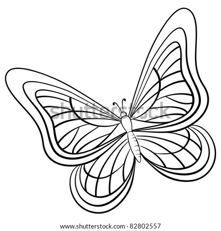 Vector, butterfly, hand-draw monochrome contours on a white background - stock vector
