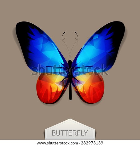 vector butterfly with blue-orange wings - stock vector