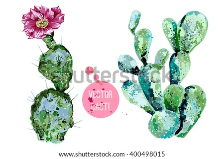 Vector cactus isolated on white background, watercolor style - stock vector