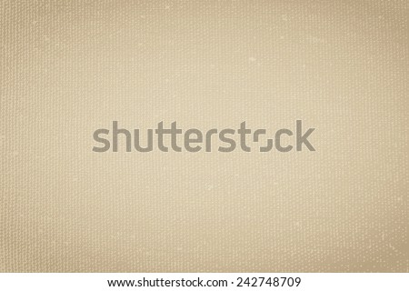 Vector Canvas Texture - stock vector