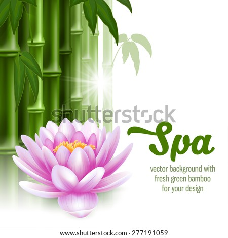 Vector card on spa theme with bamboo, and lotus on white background.  - stock vector