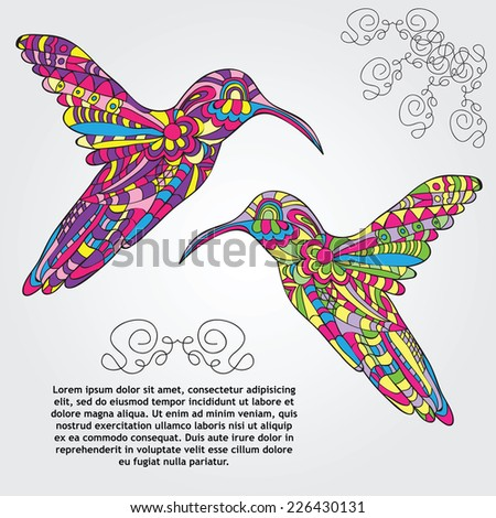 Vector card with Hummingbird - doodle pattern style - stock vector