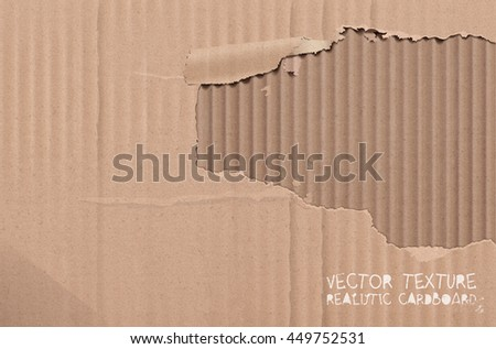 Vector cardboard texture. Realistic torn cardboard background.