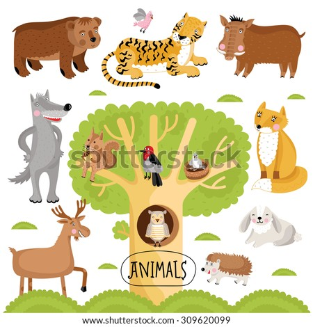 Vector cartoon animals set. Wild forest animals include tiger, wolf, fox, bear and many other. - stock vector