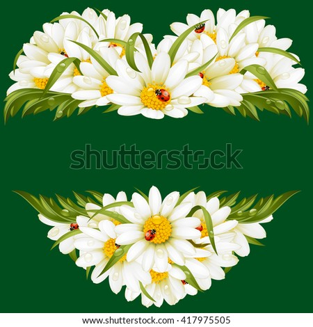 Vector chamomile frame in the shape of heart - stock vector