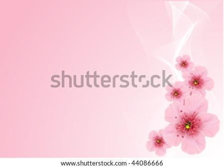 Vector Cherry blossom arrangement, against pink background - stock vector