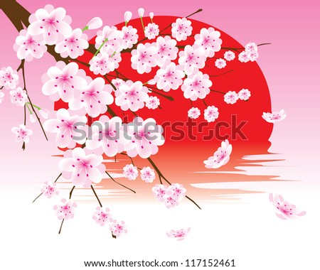 vector cherry blossom branch on the red sun - stock vector