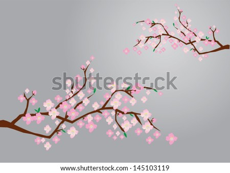 vector cherry blossom branches