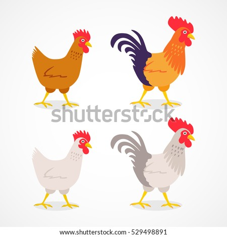 Vector chicken cork rooster isolated set