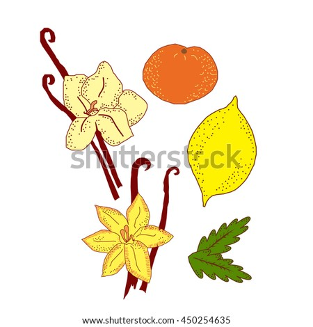 Vector childlike set of most popular odor things isolated on white. Elements for special perfume or aroma sources, illustration for products, magazines, books. Textile. Postcards and covers.  - stock vector