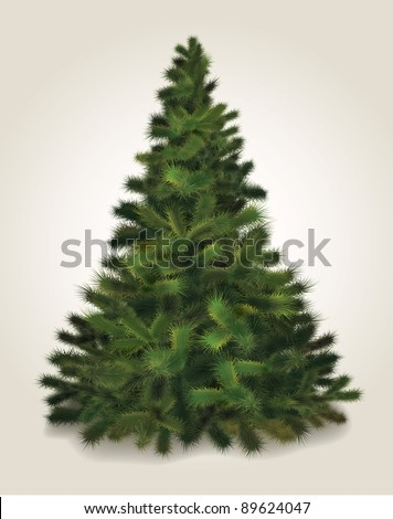 Vector Christmas tree. Realistic illustration of fluffy pine tree - stock vector