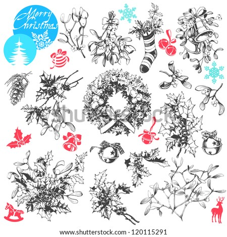 Vector clip art collection of famous Christmas plants - mistletoe and holly - stock vector