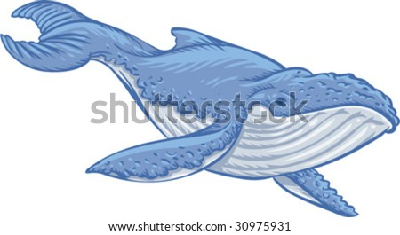 Vector, Clip Art illustration of blue whale, symbol of marine environment, wild life preservation and ecology. Hand drawn artwork with NO gradients. - stock vector