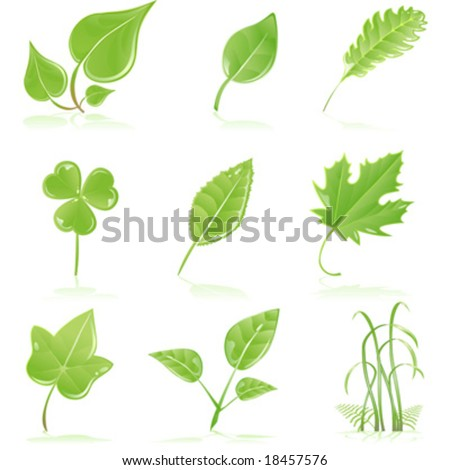 Vector clip art of a variety of fresh, green, growing, leaves and grass blades