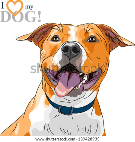 Vector closeup portrait of the smiling dog American Staffordshire Terrier breed - stock vector