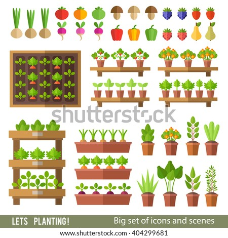 Vector collection of garden and orchard. Plants in pots and beds, vegetables and fruits. Gardening, spring seedlings, cultivation of vegetables. - stock vector