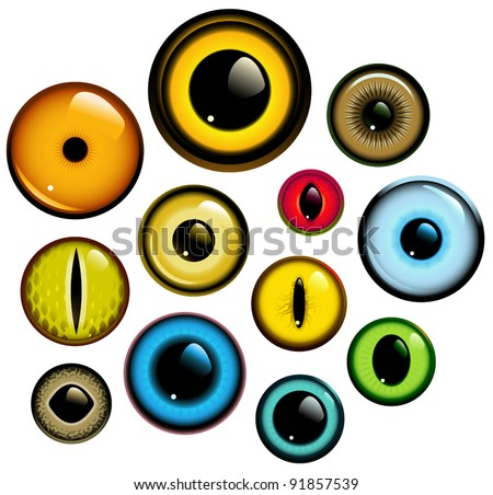 Vector collection of human and animal eyes - stock vector