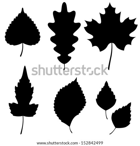 Vector Collection of Leaf Silhouettes - stock vector