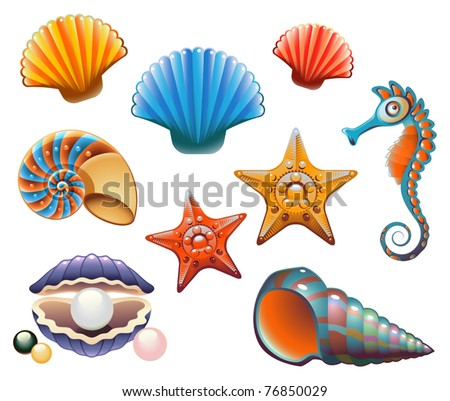 Vector Collection of Sea Shells and Stars - stock vector