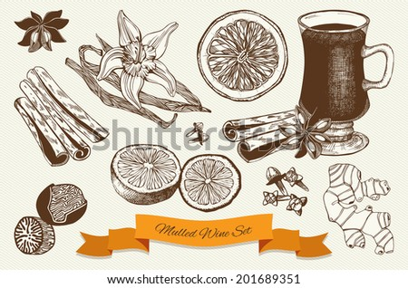 Vector collection of vintage ink hand drawn mulled wine and spices illustrations.  - stock vector