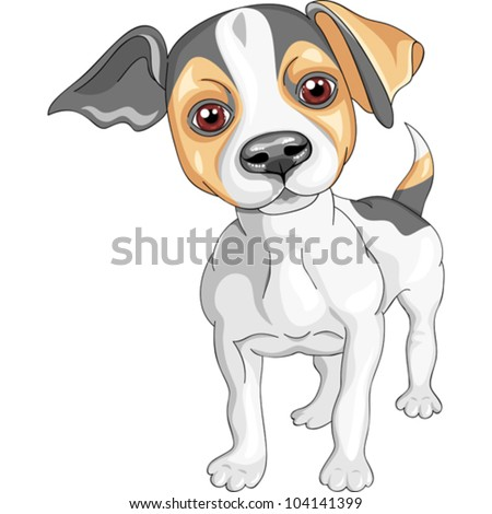 vector color sketch of the dog Jack Russell Terrier breed - stock vector
