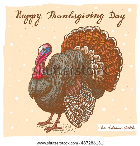 Vector  colored linear illustration of the turkey and handwritten text Happy Thanksgiving Day. Hand drawn color sketch of the farm turkey on the textured paper background.