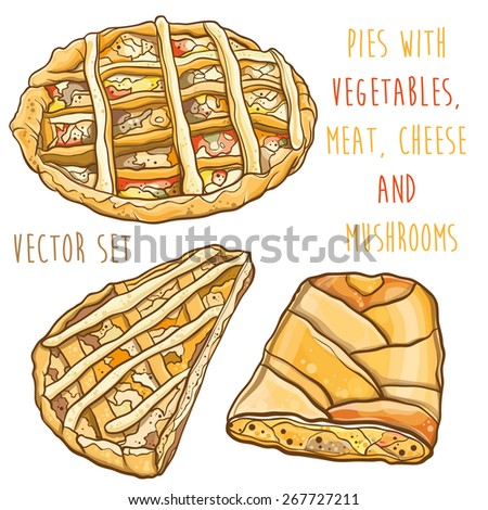 Vector colorful illustration of pies with filling: vegetables, meat, cheese and mushrooms. Vector set. eps 10 - stock vector