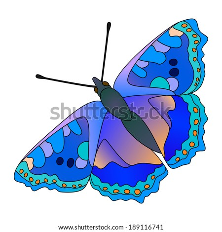 Vector colorful realistic butterfly isolated on white.