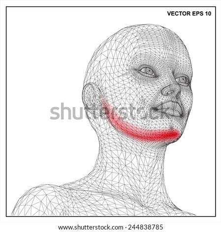 vector concept 3d wireframe cartoon female  medical