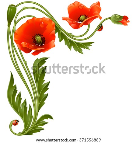 Vector corner pattern with red poppies and ladybug - stock vector