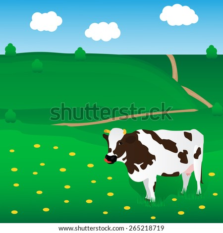 Vector cow grazes on the meadow with chamomile. Beautiful landscape - stock vector