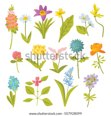 vector cute colorful cartoon isolated forest wild flowers illustrations collection